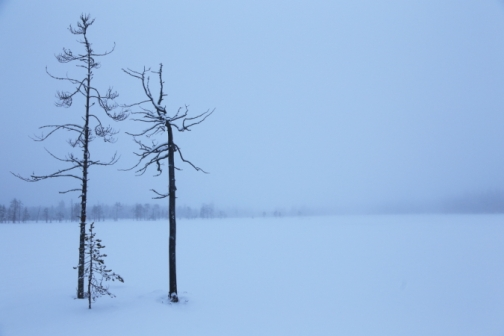 Views from early 2014 at Taivalkoski.