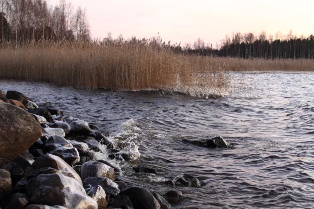 2011_11_15_3498_900